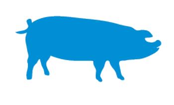 Pig-logo.png