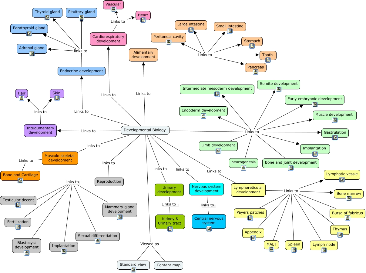 AnyPhys Developmental Content Map.jpg
