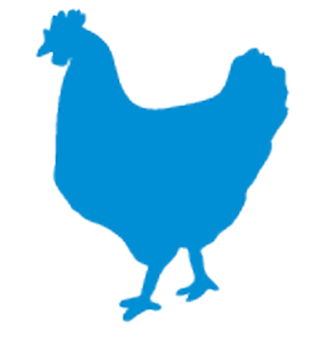 Chicken-logo.png