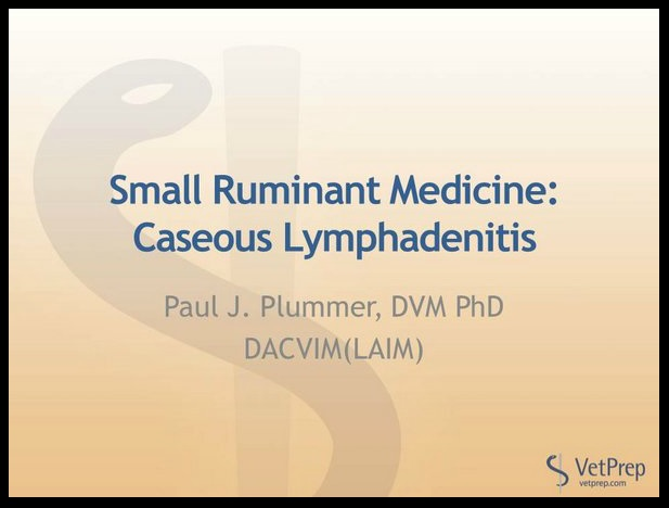 Caseous Lymphadenitis electure.jpg