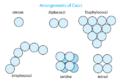 497px-Arrangement of cocci bacteria svg.png