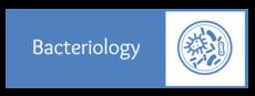 Bacteriology II.png