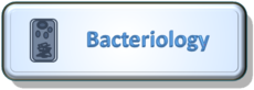 Bacteriology.png